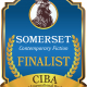 The FINALISTS for the SOMERSET Book Awards for Literary, Contemporary, and Satire Fiction - a division of the 2019 CIBAs
