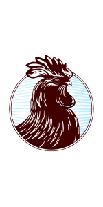 Rooster-headshot-595x1190