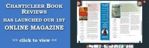 PageLines- magazine.jpg