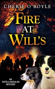 FireAtWills_cover1MB-187x300