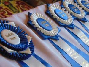 Grand Prize Ribbons!