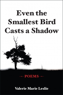 Even the Smallest Bird Casts a Shadow: Poems