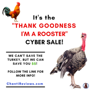 Chanticleer'sCYBER SALE