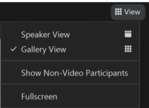 Drop down menu of Speaker View and Gallery View