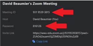 A menu with the Meeting ID and Password information